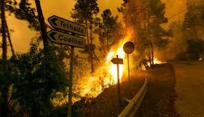 3 - 6 Langzeitfolgen des Klimawandels